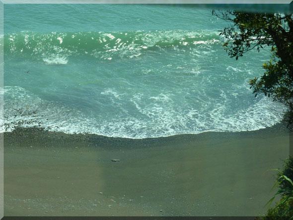 安芸市矢流からの海
