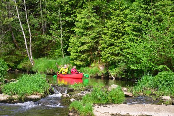 Ein absoluter Klassiker im Bayerischen Wald - die obere Ilz!