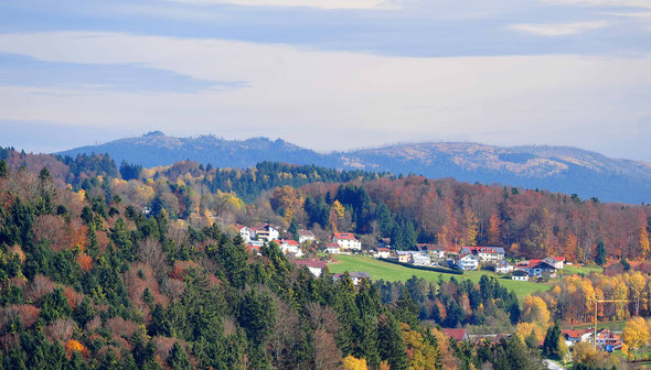 Der Dreisessel - Waldsterben live! In Vordergrund Kumreut, rechts am Horizont der Plöckenstein.