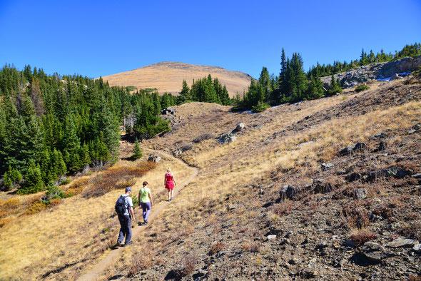 Trotz seiner Höhe eher ein kleines Hügelchen als ein richtiger Berg: der Mt. Chapin.