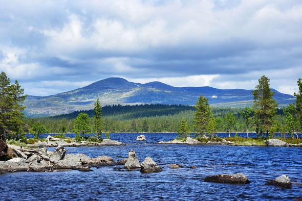 Startpunkt zur Wanderung in Norwegens zweitkleinstem Nationalparks der Gutulisjøen.