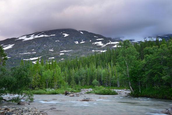 Die Simskardelva im nordwestlichen Teil des Børgefjell-Nationalparks.