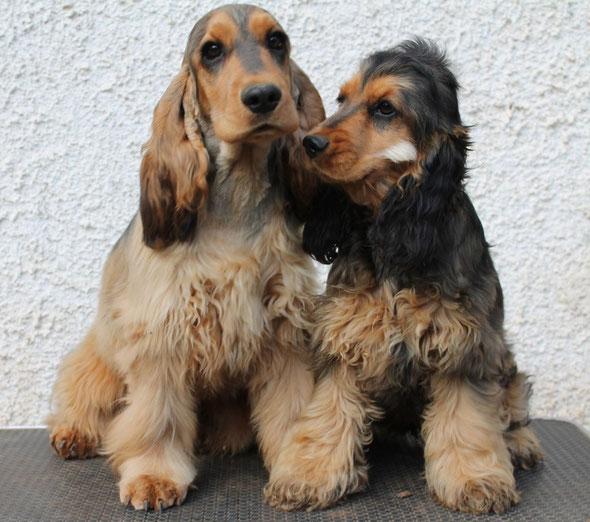 Bebbo & Nina