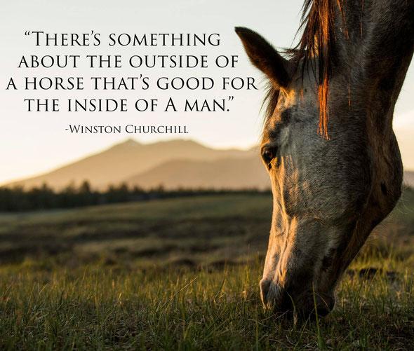 """""""Horsemanship als Reise zur Seele deines Pferdes"""""""