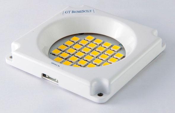 LED-Lichtmodul Airglow One | Bildquelle: GT BiomeScilt