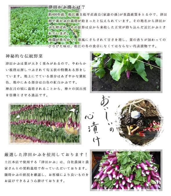 津田かぶ漬とは?約400年前、松江藩主松平直正公(家康の孫)が重農政策をとる中で、津田かぶ村で素かぶの栽培が始まったと伝えられています。その地名から津田かぶと呼ばれ、その原型は京から来松した正室が持ち込んだ近江かぶとされています。肉質が柔らかく、寒風にさらされて甘さを増、葉の香りが加わってのひなびた味は、松江の冬の食卓になくてはならない代表漬物です。