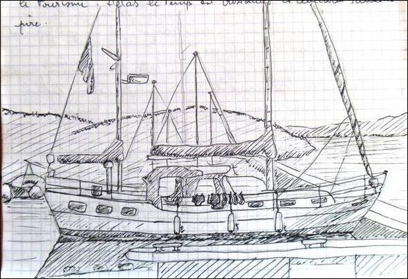 un voisin de ponton by Raph