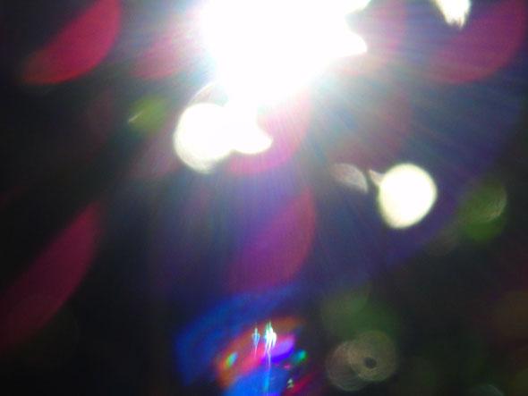 Wer sind wir? Quelle: www.lichtwesenfotografie.com
