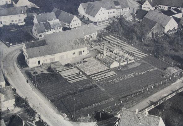 Diese Luftaufnahme der Gärtnerei stammt aus dem Jahr 1956.
