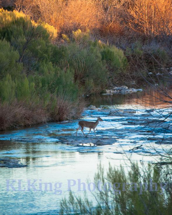 granite bottom creek