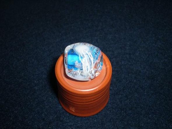 2011.8.18 R's Jellyfish