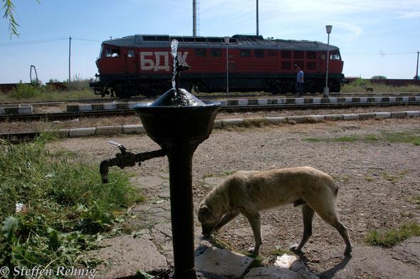 .... und gleich nach meiner Ankunft fährt die BDŽ 07 111.8 als Lz aus Ruse ein ....