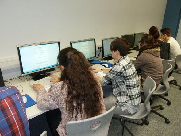 Eingeben der Bewertungen in den Online-Fragebogen
