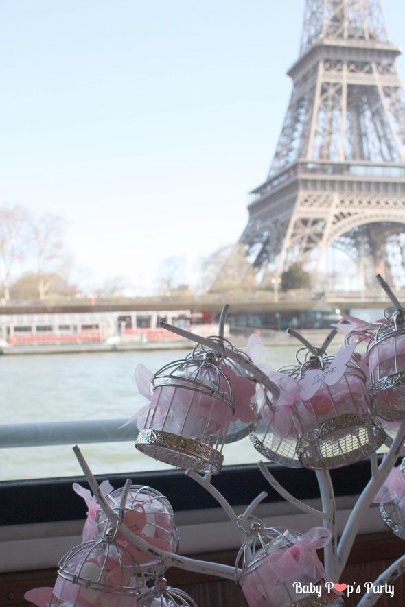 baptême paris péniche albatros rose blanc hortensias décoration organisation pâtissier traiteur candy bar bar à bonbons bordeaux 33 ballotins dragées papillon tour eiffel