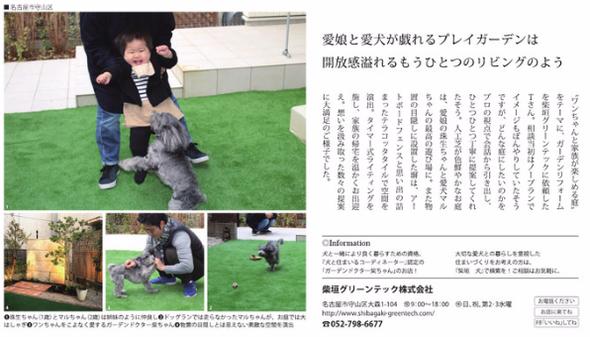 ワンダフルスタイルの3月号。マルちゃんと遊ぶ柴ちゃんも掲載されました!!!