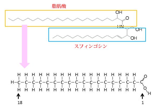 長鎖脂肪酸
