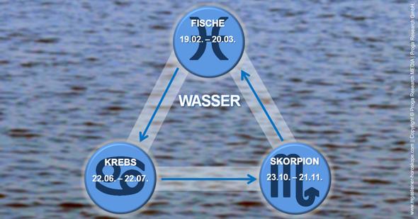 Infografik: Die drei Wasserzeichen Krebs, Skorpion und Fische