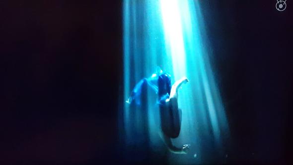 フジテレビ 水中スタント 水中が得意な事務所 泳ぎが得意 水中撮影 上手
