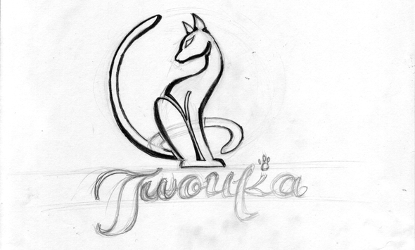 Вариант логотипа автомобильной МЯУ Мойки без воды