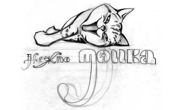 Нежно Мойка - Вариант логотипа автомобильной МЯУ Мойки без воды