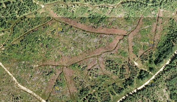 Luftbild (Juli 2011, Quelle: NÖGIS, © Land Niederösterreich) einer Entwässerungsmaßnahme südlich Karlstift