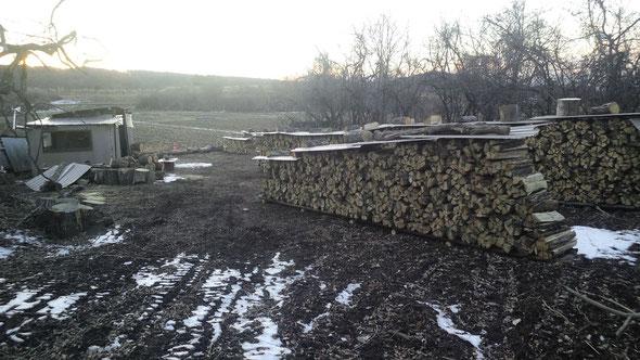 里山工房の薪基地