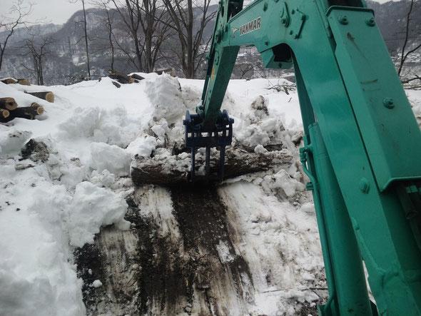 伐採現場で除雪