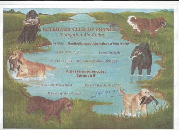 Am 8.9.2012 war Fée am Epreuve B in Châtillon la Palud/F und bestand dieses, nun darf Fée an Field Trials in Frankreich starten!
