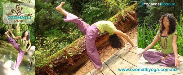 Razones por las que debes probar el Vinyasa Yoga 72fde29ebc88