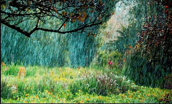 Envie de changement paysage de pluie et nature