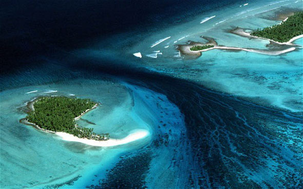 The low-lying Pacific nation of Kiribati is negotiating to buy land in Fiji so it can relocate islanders under threat from rising sea levels.