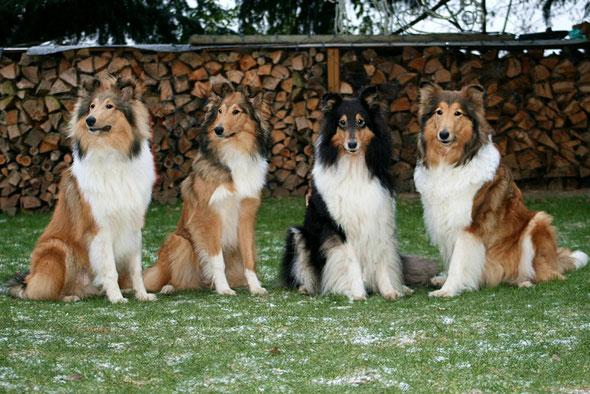 v. li.: Bennett, Boots, Klara, Meggy