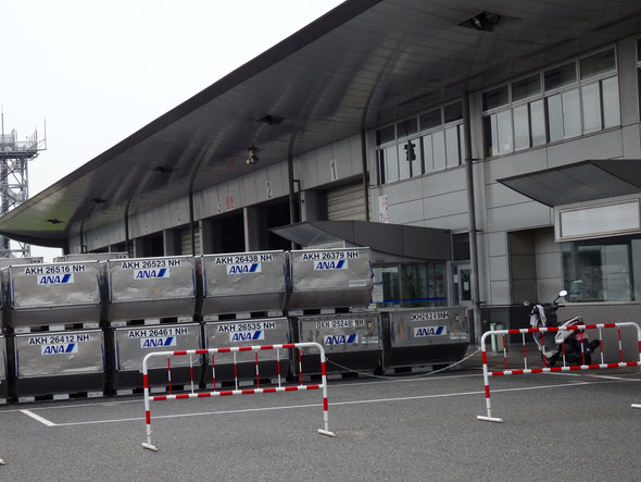 福岡県手乗りインコ小鳥販売店ペットショップミッキン 福岡空港のANAの事務所から。