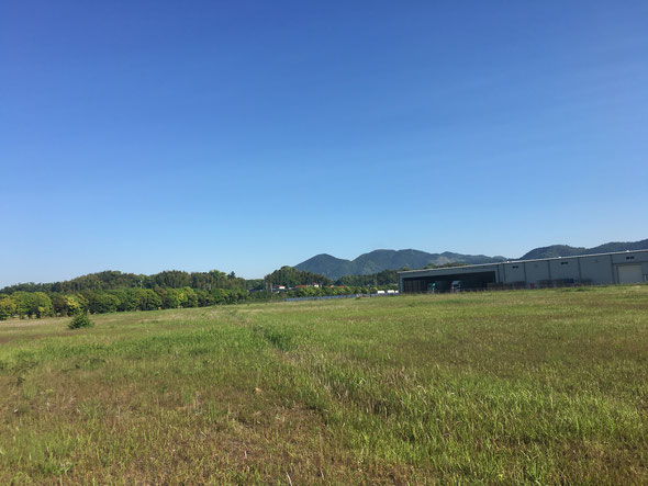 福岡県手乗りインコ小鳥販売店ペットミッキン 今日の犬鳴峠は快晴です。