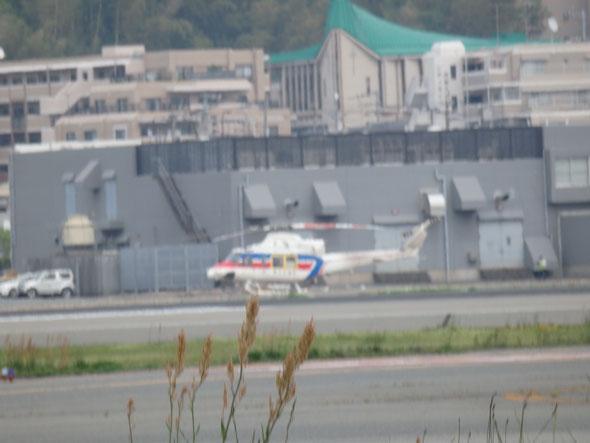 平成28年4月25日 福岡県手乗りインコ小鳥販売店ペットショップミッキン 福岡空港のヘリコプター