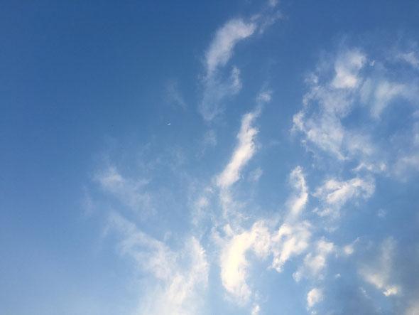 福岡市の空港付近は晴天でした。