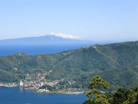 網代湾と伊豆大島