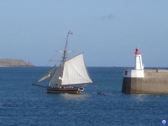 Renard passant le môle des noires à St Malo (© lebateaublog 2013)