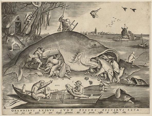 《大きな魚は小さな魚を食う》原画