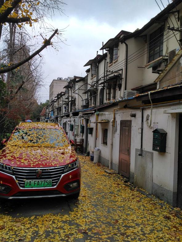 onegai kaeru all rights reserved shanghai how to enter china market shanghai street