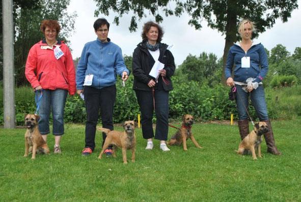 Von rechts: Amy (Dixie), Anton, Mama Edda und Attila (Rusty) mit ihren Frauchen