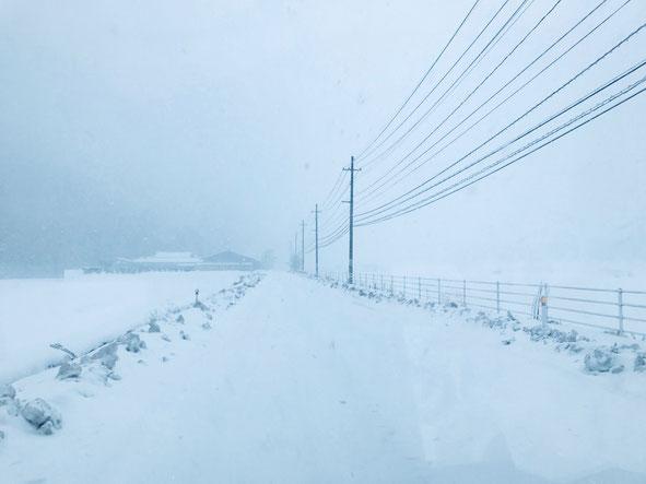 隠岐の島 京見屋分店 冬 原田 ホワイトアウト