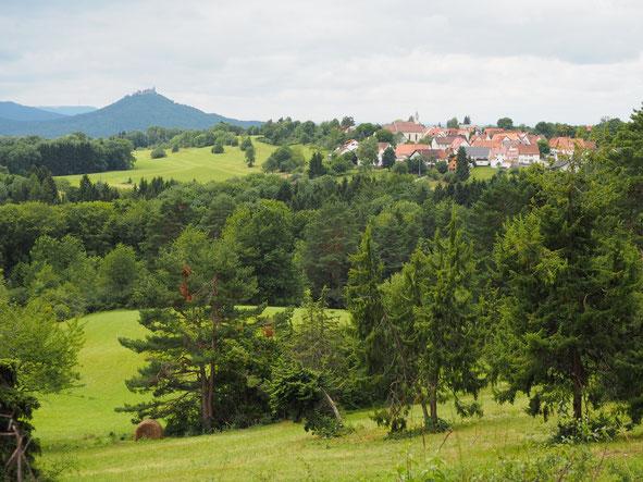 Blick über die Beurener Heide nach Beuren und zur Burg Hohenzollern