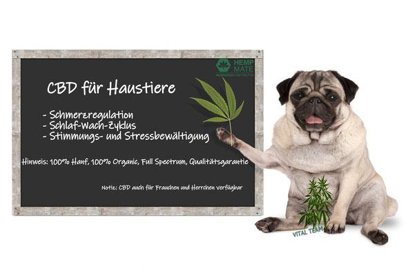 CBD für Hunde und Menschen - HempMate CBD Öl