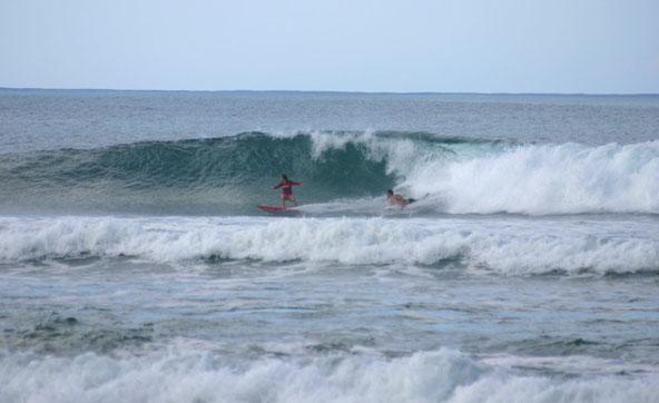 surfing, rincon, antonio's