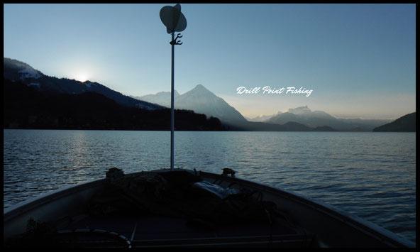 Drill Point Fishing Onlineshop - Unterkategorie Titelbild - Schleppsignal, Signalmast, Schleppmasten - Schleppangeln