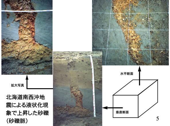写真2 今金町豊田橋付近のトレンチ断面に現れた礫を含む砂脈(遠藤,2017)