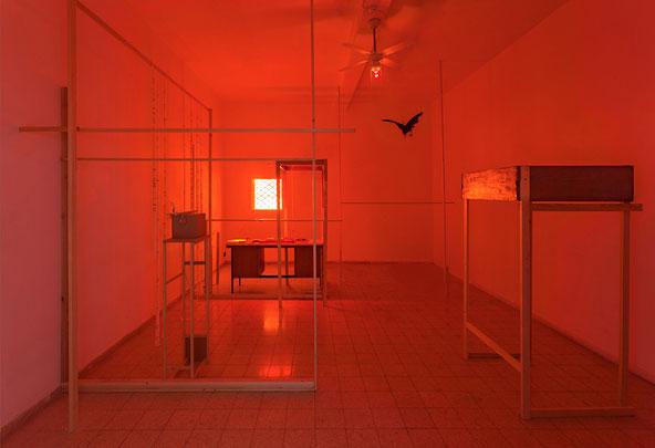 Lee Nevo, installation art,
