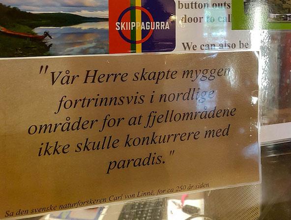 """""""Der Herr schuf die Mücken hauptsächlich in den nördlichen Gebieten, damit das Fjell nicht mit dem Paradies konkurrieren kann."""""""