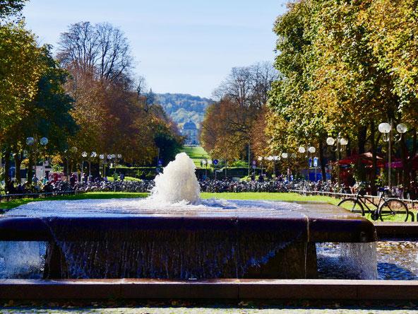 Sehenswürdigkeiten Deutschland Bonn am Rhein